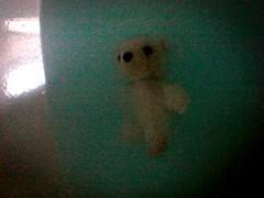 orsetto (marcobertarelli) Tags: water abandoned pooh orsetto peluche children color gigio polarbear