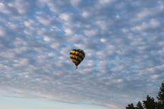 Balloon fest (Tricia Lynne) Tags: clouds hotairballoon balloonfest