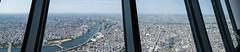 Tokyo Panorama (emilwestin) Tags: panorama tokyo skytree canon eos m 22mm