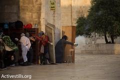 Palestinian youth wait for the police inside Al Aqsa mosque, (TeamPalestina) Tags: life uk usa man me turkey sweet palestine islam uae hijab ramadan qatar ksa photooftheday picoftheday palestinian        bestoftheday instagood