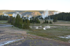 Sprinkler Geyser, Yellowstone NP (David A's Photos) Tags: june sprinkler yellowstonenationalpark yellowstone geyser yellowstonetrip ugb uppergeyserbasin sprinklergeyser june2016