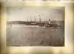 'SS ORIENT 3', Sydney Harbour