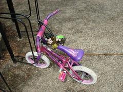 Today's Ride | In Pink (e r j k . a m e r j k a) Tags: bike ride pennsylvania allegheny whimsical sewickley erjkprunczyk
