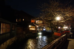 (Richard, enjoy my life!) Tags: bridge flower japan night river kyoto sony   sakura   dscrx100