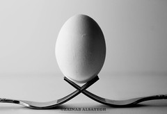 egg (Zainab AlS) Tags: blackandwhite cute canon photography funny flash creative fork indoor eggs 365 ideas bounce 550d
