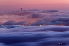 Summer fog sunset colors - Fog city San Francisco