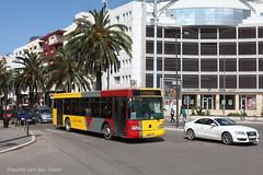 Inspired by TEC? (Maurits van den Toorn) Tags: bus mercedes morocco palmtree maroc casablanca autobus marokko omnibus