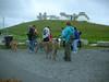 DeerIsland06-03-2012005