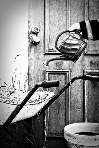 236/365 Wheelbarrow, door and a watering pot