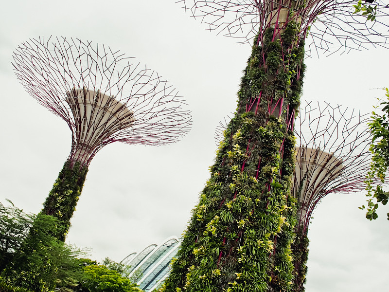 Pollen at Gardens by the Bay: Eat-A-Dish for Make-A-Wish!
