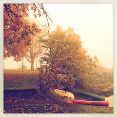 Early one October morning (Nick Kenrick.) Tags: autumn canada fall fog october canadian canoe makebeautiful magicunicornverybest lucaslens hipstography