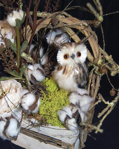 Winter Owl  - Photo by Sharon McGukin AAF, AIFD, PFCI
