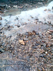 Sea Shore (Neerja Bakshi-Sharma) Tags: sea shells water rocks salt pebbles shore vision:mountain=0504 vision:outdoor=0947 vision:sky=0565