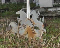 Holt- Wild horses 1