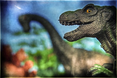 #GettingCloser To Our Future (hbmike2000) Tags: flickrfriday gettingcloser odc brandnew new dinosaur trex tyrannosaurus brachiosaurus brontosaurus stegosaurus dinosaurs tree trees eye cretaceous cretaceousperiod toy toys plastic small macro hoya closeuplens closeup 112inchestall old retro dirty dirt dust dusty scratched scratches color colors iswearhesstaringatme carnivore herbivore hdr hbmike2000 nikon d200 extinct extinction future past bokeh vignette hand mouth jaw teeth texture textured hcs clichesaturday