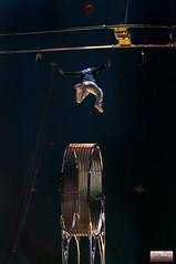 Cirque Pinder 2014-54 (Christian Picard) Tags: en elephant paris france sol de french temple la photo yahoo google nikon photographie image expression mort cuba lion images christian le clowns cirque acrobate picard naturelle roue otarie photographe 2014 savigny pinder lumire d90 edelstein frdric 2013 soldecuba 77176 lexpression valri frdricedelstein cirquepinder201434 loionne