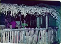 9 Indept Para Sqn RE atap abode (brian395) Tags: belize puntagorda 1979 rideau guatamalan irishguards rebroadcast britishhonduras signalplatoon rideaucamp 1ig jimhagan cadenasop puertomendez