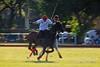 Feb 2, 2014 (alabang) Tags: horses polo 2014 ayalaalabang eduardolopez alabangcountryclub chairmanscup canonef400mmf28lisiiusm stefanojuban santijuban