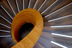 Gastropod (The Green Album) Tags: gardens spiral botanical restaurant wooden carved edinburgh terrace steps smooth shell staircase helix gastropod