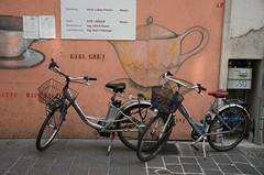 Bozen (anuwintschalek) Tags: italien italy bike bicycle tirol spring rad fahrrad ratas tyrol sdtirol frhling bozen southtyrol 2014 kevad itaalia jalgratas d7k tirool nikond7000 18140vr lunatirool