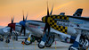 Warbird Row (m:rael) Tags: show aviation air steve north fame row american planes but mustang february fragile warbird hinton chino p51 agile warbids doubletroubletwo