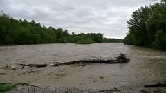 Hochwasser 05 - 2014 (12) (Armin Rodler) Tags: lumix austria österreich flood panasonic mai armin highwater hightide hochwasser 2014 2801 rodler katzelsdorf arminrodler