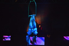 Like Bats... (CoasterMadMatt) Tags: show uk greatbritain england english night sisters photography hall concert nikon upsidedown theatre photos britain sister circus zombie sinister stage great group performance silk down rope victoria aerial photographs cast trent gb stephanie stokeontrent production quarter hanging british ropes ambassador performers staffordshire stoke act upside atg cultural theatres acts concerthall horrors silks hanley nikond3200 2015 staffs hangingupsidedown stephanie2 circusofhorrors d3200 stephanie1 circusacts culturalquarter sinistersister ambassadortheatregroup sinistersisters coastermadmatt coastermadmattphotography victoriahall2015 victoriahalltheatre nightofthezombie circusofhorrors2015 circusofhorrorsthenightofthezombie
