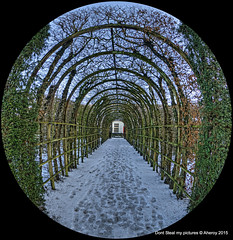 Berceau,Prinsenhof,,Groningen stad,the Netherlands,Europe (Aheroy(2Busy)) Tags: city trees winter snow holland art netherlands dutch architecture landscape fun europe colours different sneeuw nederland fisheye groningen stad berceau prinsenhof tonemapped singlerawhdr aheroy aheroyal beautifulgroningen canonef815mmf4lfisheye