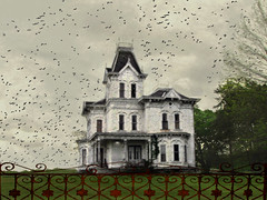 Beyond the Gate (Hope2b) Tags: birds dark eerie ghastly shadowy hss runic fitchville sliderssunday