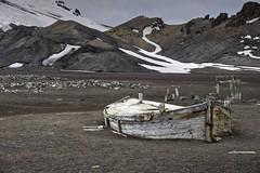 DSC00854_HDR (Darrell McKay) Tags: antarctica 2015