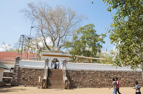 anuradhapura - sri lanka 6