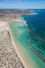 Coral Bay_Western Australia_3054