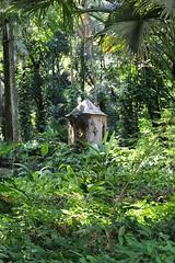Shelter in a tropical rainforest in Rio de Janeiro, Brazil (eltpics) Tags: brazil riodejaneiro wooden rainforest craft tropical shelter eltpics