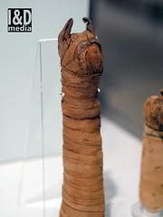 mcat5 (Internet & Digital) Tags: mummy mummified cats ibis victorian mummifiedcats thoth hawk sacrifice ritual ancient ancientegypt offerings god isis horus osirus egypt giftstothegods exhibition glasgow kelvingrovemuseum animalmummycatmummygiftstothegodsexhibitionglasgowkelvingrovemuseummummifiedcatsancientegyptegyptcroccodilecatheadibisvictoriansacrificeritualancientofferingsgodc21troyidmedia