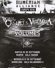 Va a  ser brutaaaaal!!!!  #bornofosiris #volumes #deathcore #metalcore #core #concert #december #2016 #barcelona #tmblr #cool #new #picture (isaactrullols) Tags: barcelona new cool concert december picture metalcore core volumes 2016 deathcore tmblr bornofosiris