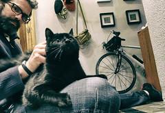 4 de Abril de 2016 - con el gato Facundo