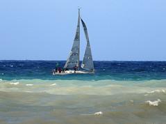 16061701829foce (coundown) Tags: genova mare vento velieri sailingboat ussmasonddg87 ddg87 ussmason mareggiata piloti