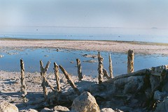 (Electric Fantastic) Tags: film 35mm desert saltonsea bombaybeach