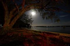 DSC_0060 (2) (RUMTIME) Tags: moon nature queensland coochie coochiemudlo
