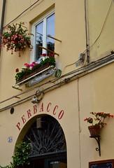 Perbacco (Irene Grassi (sun sand & sea)) Tags: flowers windows italy bar italia lucca tuscany fiori toscana caff finestre scritte perbacco piazzadellanfiteatro finestrafiorita