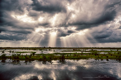 The Wonder of Light... (LouisAnnImage - The Photography of Howard Brown) Tags: county sunset cloud sun water clouds island ray wildlife national swamp rays hdr merritt refuge backwater brevard crepuscular nwr cloudsstormssunsetssunrises