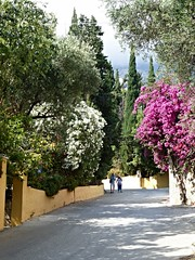 The main road descending the hill (Wider World) Tags: road red people white bougainvillea greece kefalonia oleander kephalonia cephalonia lourdas bract