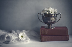 (donna leitch) Tags: books daisies stilllife donnaleitch silver tabletop flowers 50mm f14 textured