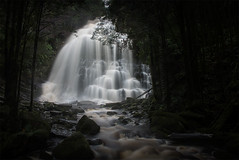 Nelson Falls after the Rain (Leanne Cole) Tags: longexposure rain waterfall photographer photos australia images tasmania environment fineartphotography nelsonfalls nikonaustralia environmentalphotography fineartphotographer environmentalphotographer formatthitech leannecole leannecolephotography nikond750