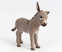 Donkey (Mathias L.) Tags: macro animals kids fun toys plastic whitebox schleich