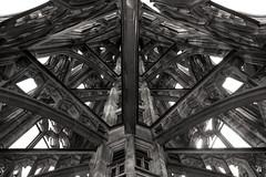 Filigree Tower (G. Lang) Tags: blackandwhite bw tower church monochrome architecture germany deutschland blackwhite tour noiretblanc kirche cathdrale architektur turm minster allemagne glise ulm mnster filigree badenwrttemberg ulmermnster einfarbig filigran schwarzweis filigrane ulmminster sonyilce7m2 sonyalpha7ii gliseprincipaledulm