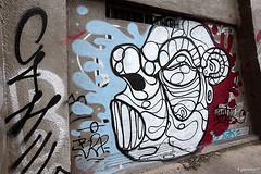 CrueSeine_0024 (cyberien 94) Tags: streetart seine graffiti paysage marne valdemarne alfortville confluent ivrysurseine charentonlepont