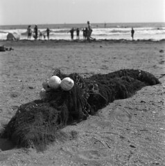 Monster on the beach (Mark Dries) Tags: japan ilford fp4 planar ilfordfp4 carlzeiss hasselblad500cm markguitarphoto markdries