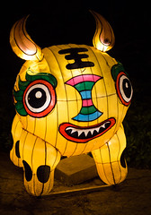 _DSC9737_2 (Elii D.) Tags: light fish flower animal night zoo monkey neon dragons lantern lampion dargon