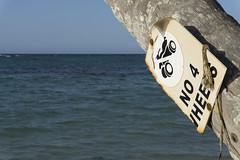 realmente? (bilderkombinat berlin) Tags: ocean sea signs beach palms mar horizon naturallight playa quad lettering republicadominicana lasterrenas nofilter caribe saman 2016